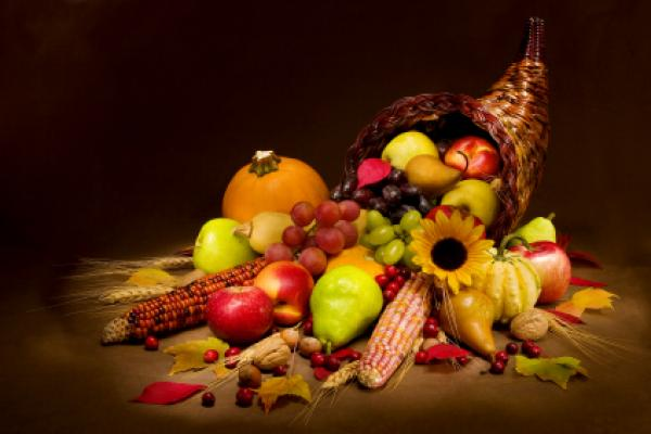 Thanksgiving In the United States, since the autumn of 1621 when the Pilgrims and the Wampanoag celebrated the colony's first successful harvest at the Plymouth Plantation, we have taken time […]